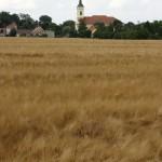 krenovicka-jizda-4_273